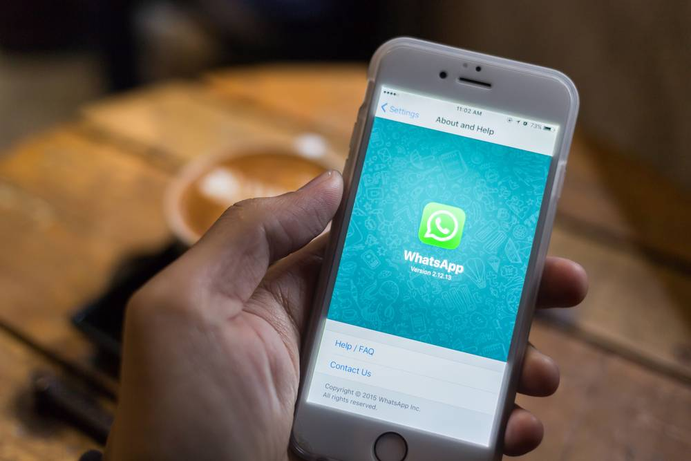 WhatsApp Faces EUR 0 25m Fine in Germany If It Fails to Translate Terms of  Use | Slator