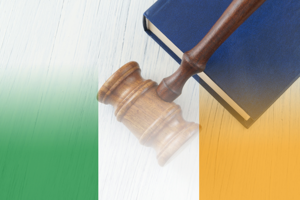 Irish High Court Dismisses Challenge to State Translation Service Contract