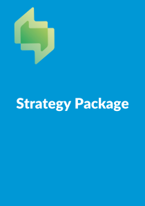 Slator Research Strategy Package - Translation Industry Research