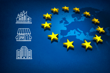 How and Why European SMEs Use Machine Translation