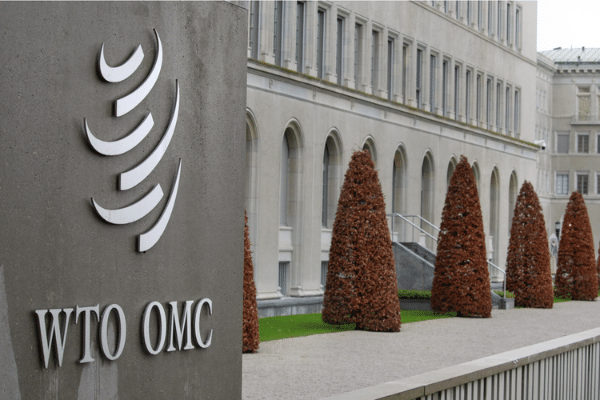 How WTO Translators and Interpreters Enable International Trade